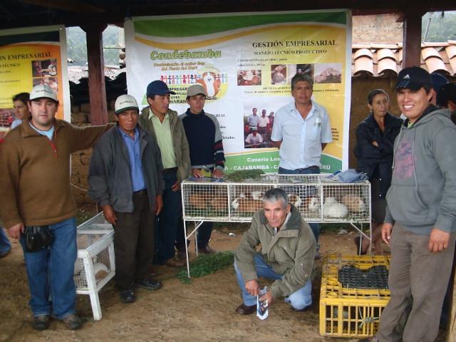Apoyo a la Micro y Pequeña Empresa en el Perú