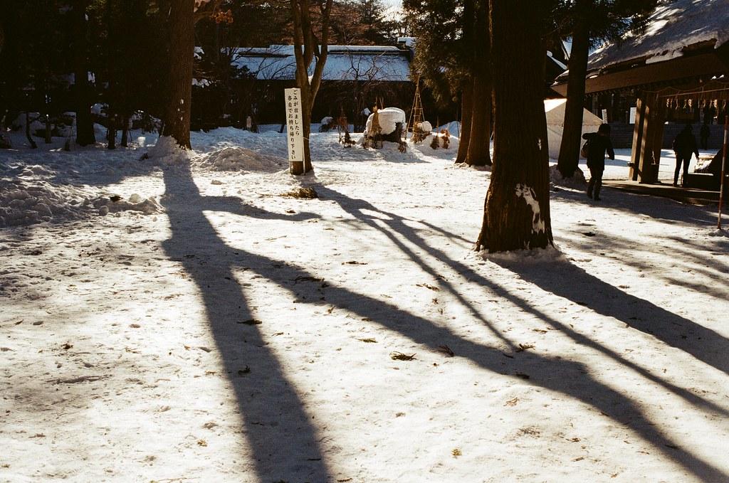 北海道神宮 Japan / Kodak ColorPlus / Nikon FM2 北海道神宮,一直走著,一直聽著踏雪的聲音,兩旁的樹林陰影就這樣落在雪地上。  太過新鮮的畫面,所以一直拍個不停。  Nikon FM2 Nikon AI AF Nikkor 35mm F/2D Kodak ColorPlus ISO200 8265-0006 2016/02/01 Photo by Toomore
