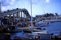 Bahamas 1988 (226) New Providence: Potter Cay, Nassau