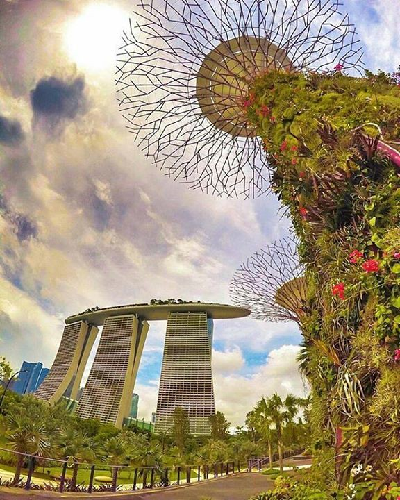 Comparateur hotels gardens by the bay photo by for Hotel comparateur