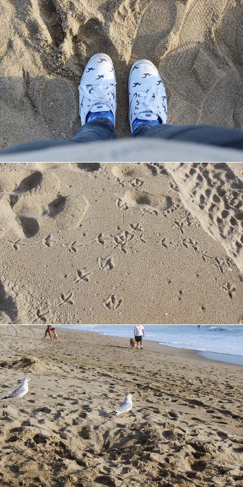 beach2_vickyt