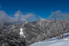 七ツ石山から見る石尾根と雲取山