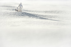Memory of a weekend walk on Hoth part 2""