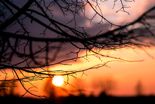 Warm Bavarian Sunset - 1