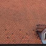Tile Roof Window in Croatia