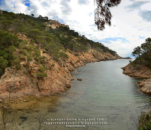 Cala Bona (Tossa de Mar, Girona)