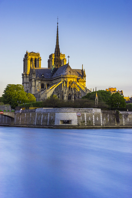 Notre-Dame in the early morning