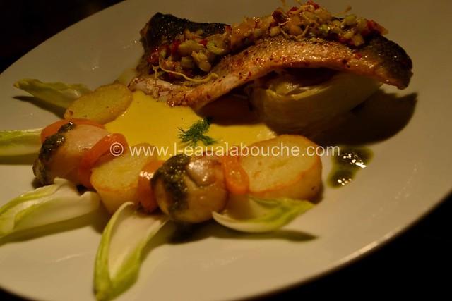 Bar Grillé sur Peau Nid d'Endive & de Fenouil Sauce aux Agrumes © Ana Luthi Tous droits réservés_57