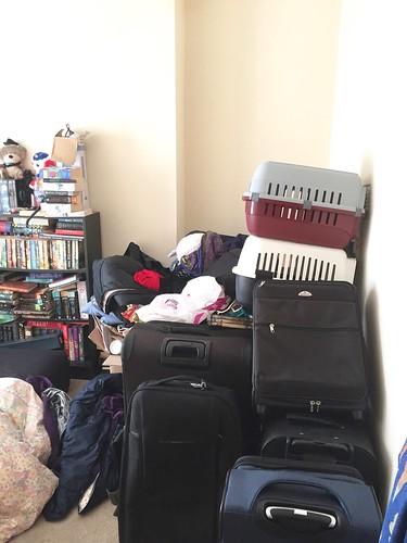 The de-cluttering begins - spare room