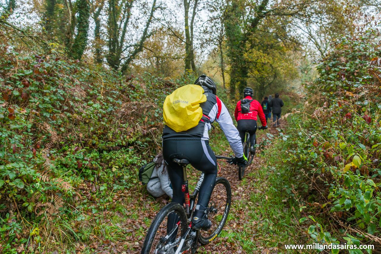 Paso de ciclistas por el bosque da Fervenza