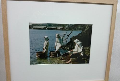 Illa Mikimoto - Cultivo de perlas