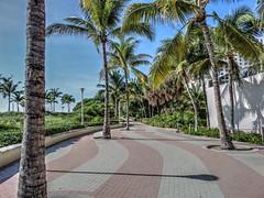 Miami (US)