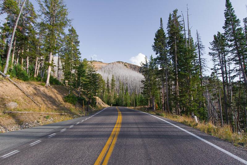 Yellowstone-33