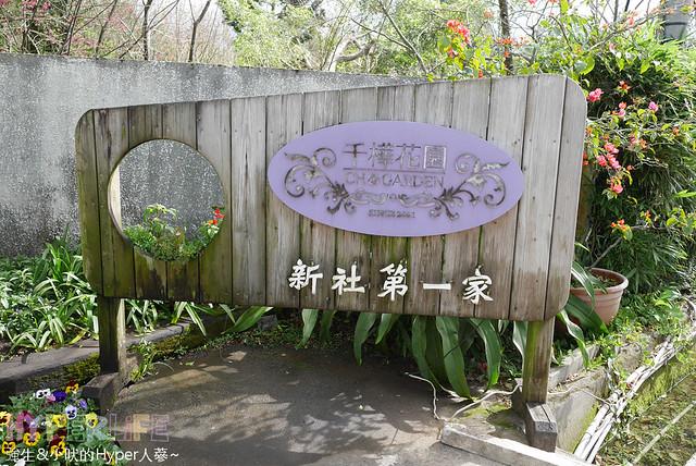 2016台中新社千樺 (3)