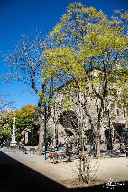 Jardins de Rubió i Lluch, Biblioteca de Catalunya, Barcelona