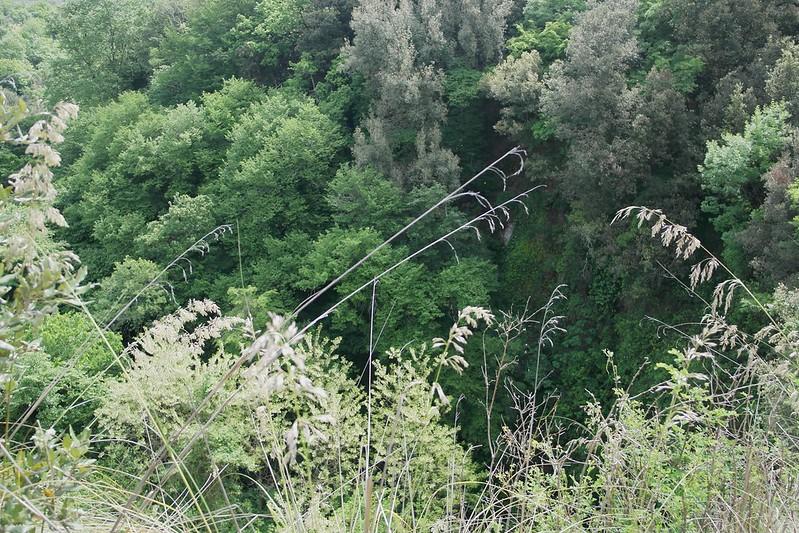 Vista dal ponte di Sant'Antonio
