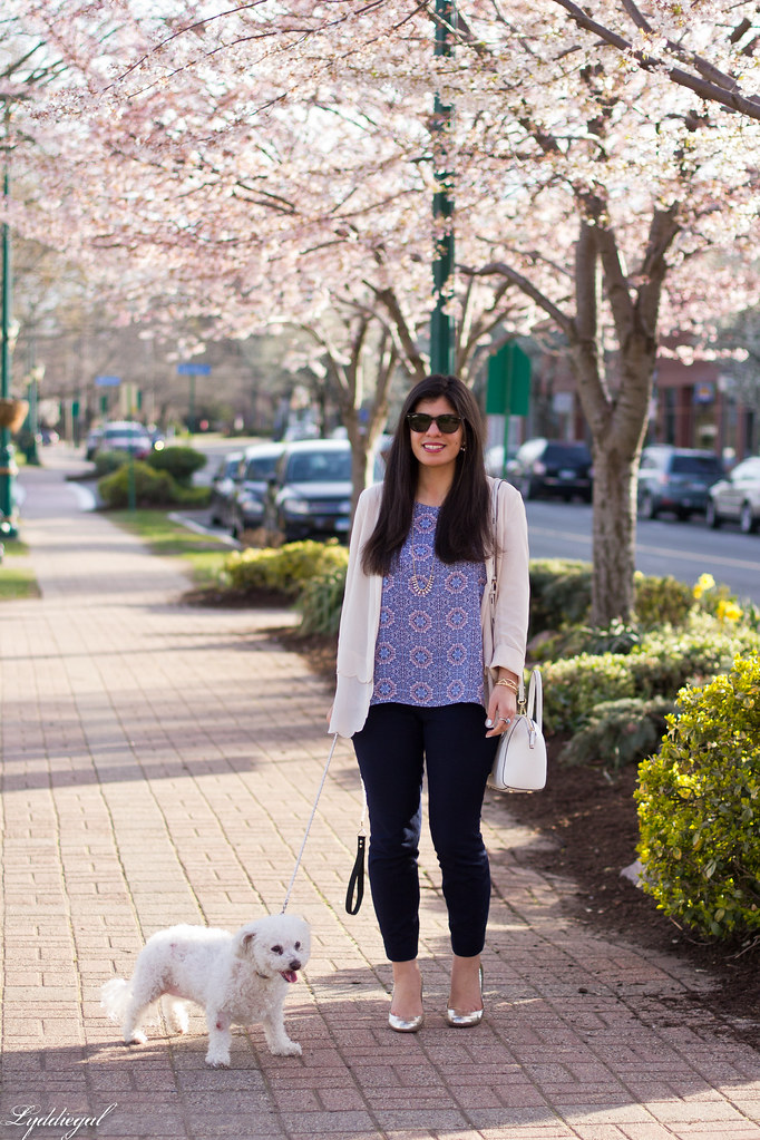 scalloped blazer, printed tank, navy pants, dog.jpg