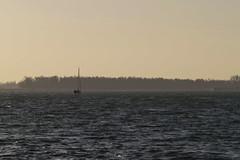 Sailing.   Backlight, Tongplaat, Dordrecht