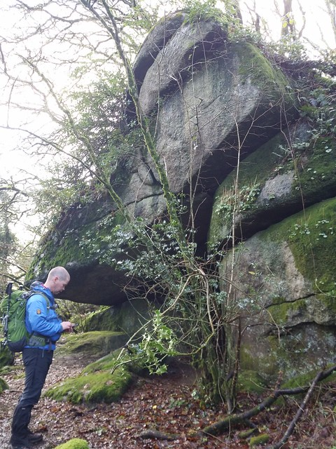 Unnamed outcrop on the ascent to Sharpitor (Lustleigh)
