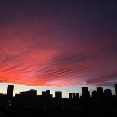 Keep hating #SantaFe   #sunset #atardecer #Mexico #winter #invierno
