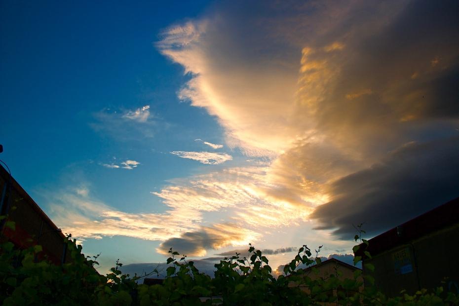lara-vazquez-madlula-style-streetstyle-fashionblog-summer-sunset