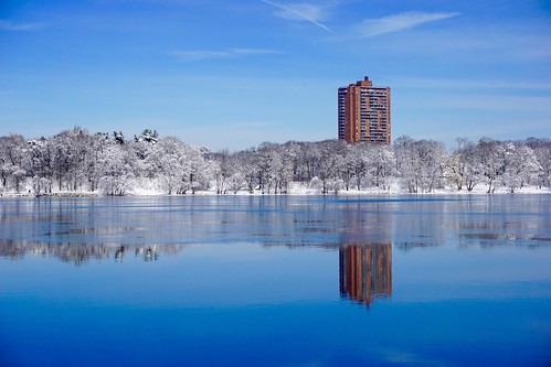 blue trees winter white snow reflection building ice nature water boston landscape frozen pond massachusetts newengland minimal clean clear simple minimalist pw emeraldnecklace jamaicapond winterstormlexi