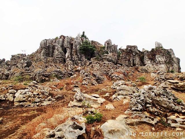 Stone garden 5