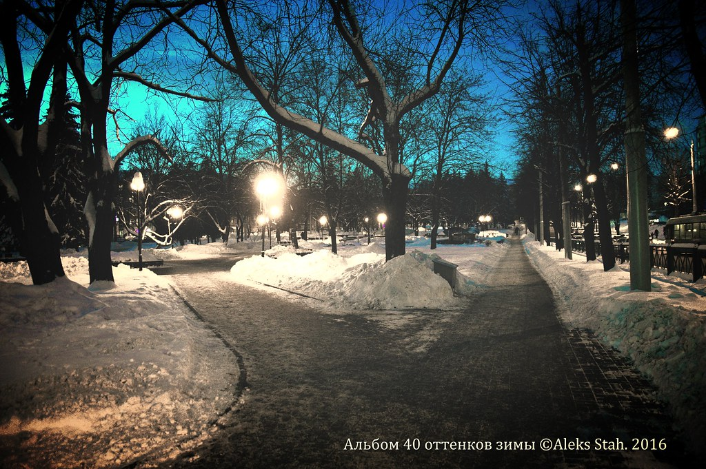 40 оттенков зимы 003