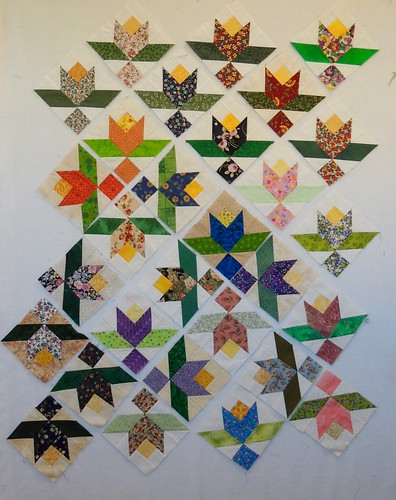 Summer Vine Blocks