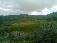 Meadow at Van Cott