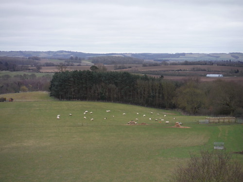 Chilterns View from tower of Old St. Mary's Church, Clophill