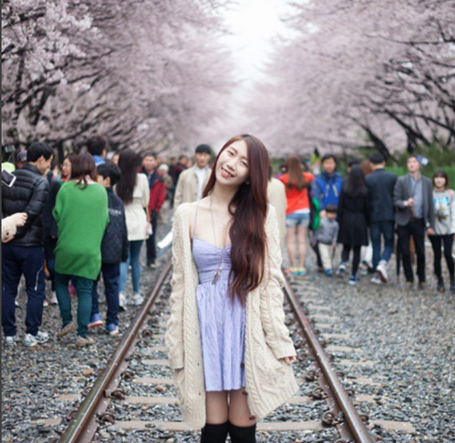korea sakura jamie