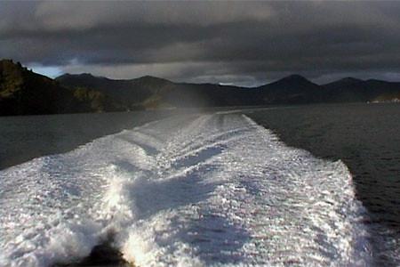 Neuseeland Vor 20 Jahren Land Der Langen Weissen Wolke
