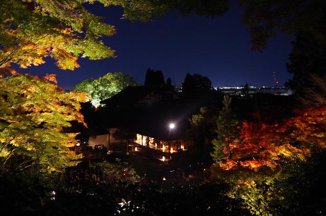 20141122-武奈ヶ岳(Saku)-0085.jpg