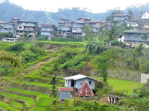 P16-Luzon-Mayoyao-Terrasses (20)