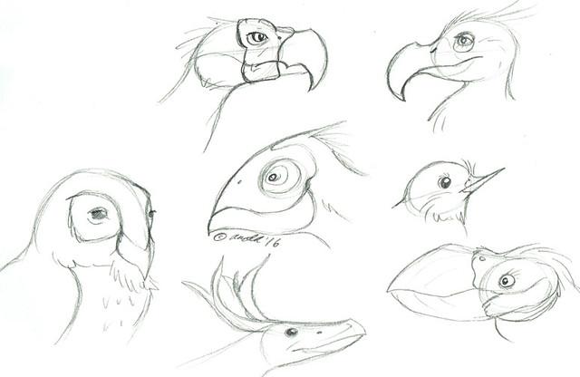 2.2.16 - Bird Creatures