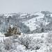 Slate Mountain - Idaho by petechar