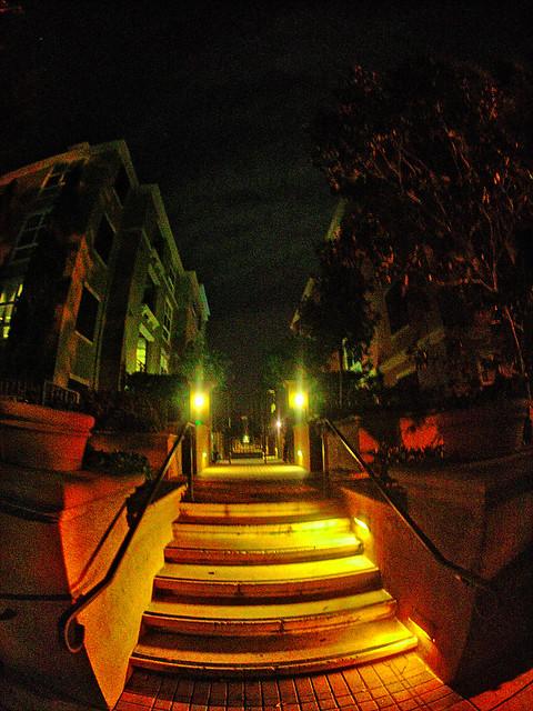 Night At San Jose