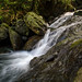 Waterfalls of El Yunque Rainforest