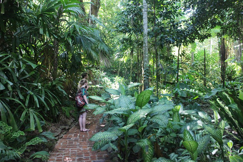 Bike ride to Cairns Botanical Gardens