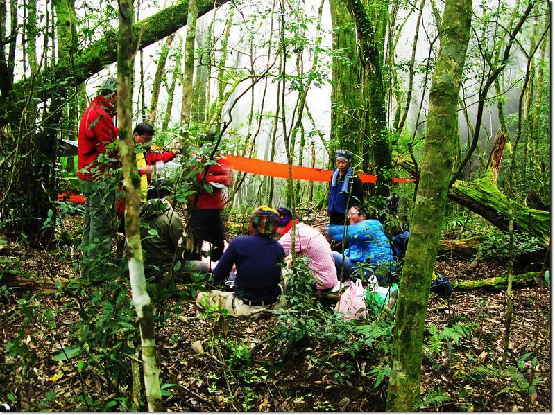 魔幻森林營地 2