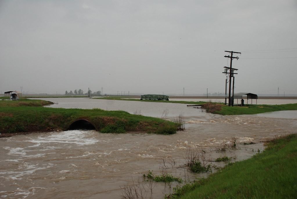 Flood Prairie 2