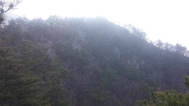 아침산책길: 도장산 - 소나무숲 절벽