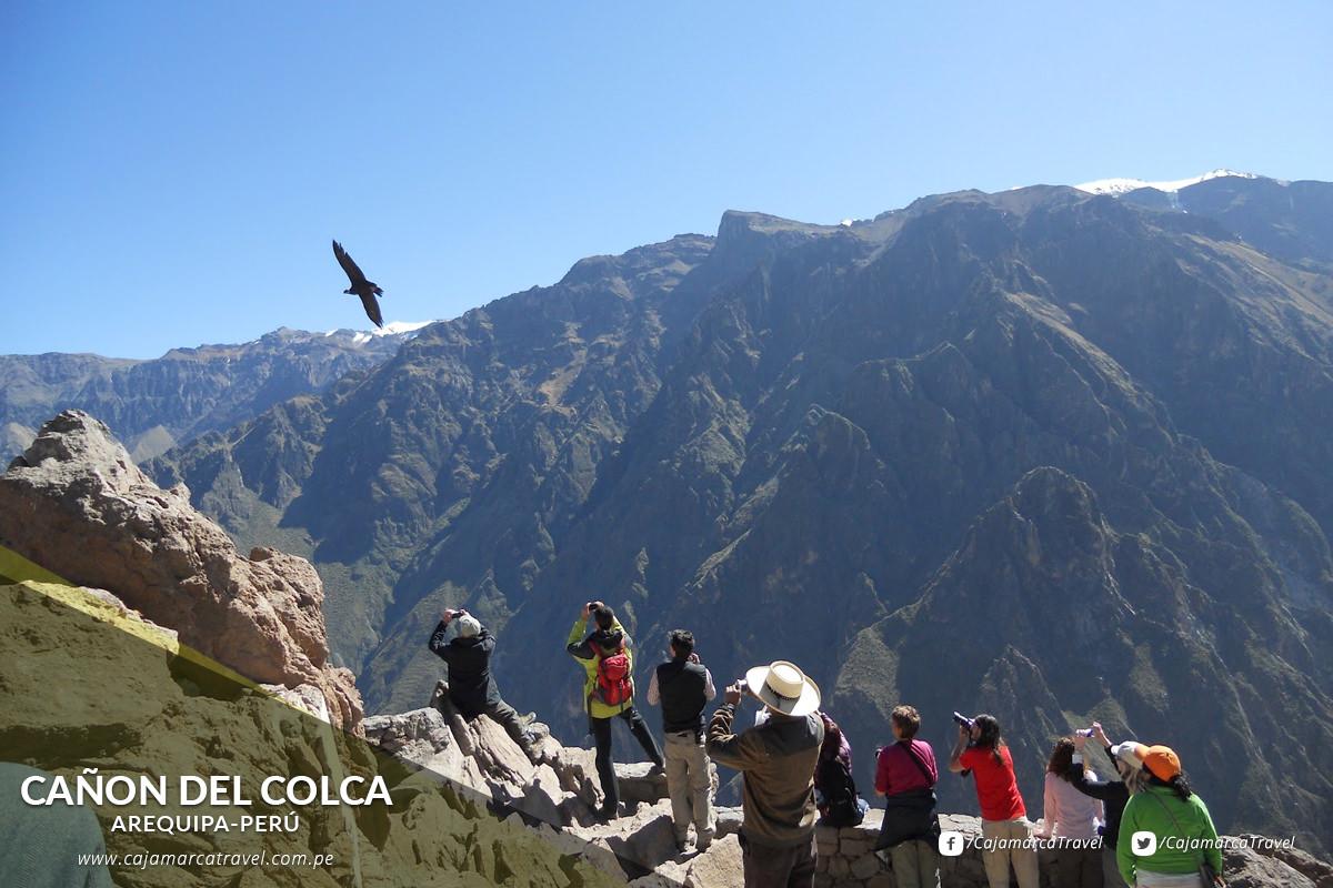 El Cañon del Colca, es considerado como el mas profundo del mundo, se puede ver y fotografiar al ave más grande del planeta: el Cóndor.