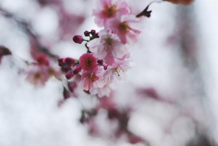 Foto-28.03.16,-23-17-29-2
