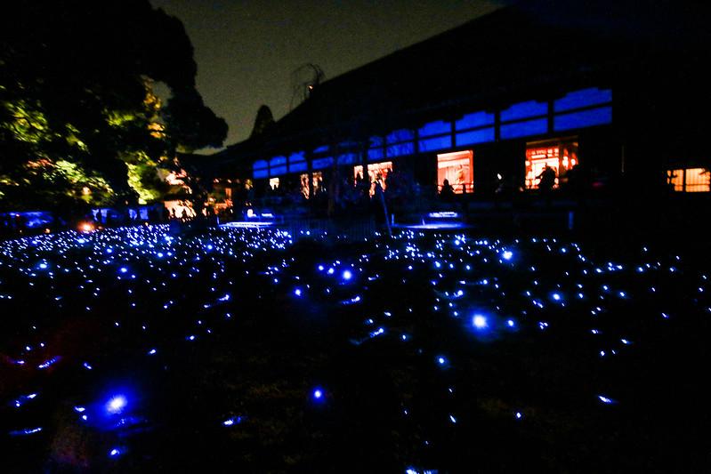 20141122-武奈ヶ岳&京都ライトアップ-0676.jpg