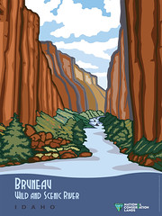 Bruneau Wild and Scenic River - Postcard