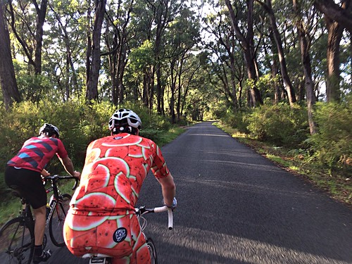 Rolling with Lane & Phil - Tourist Road #ridethehighlands #Attaquer #Rapha