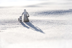 """Memory of a Weekend Walk on Hoth"" Week 5 of 52 Theme: ""Family"""