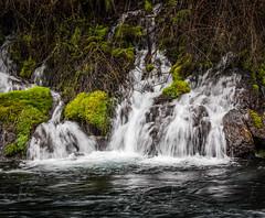 Tangled Waterfall (HDR)